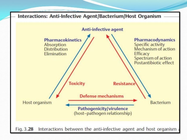 drug resistant organisms essay Free essays from bartleby | antibiotic resistance in bacteria for about 50 years,  antibiotics have been the answer to many bacterial infections antibiotics.