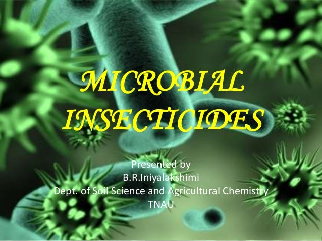 MICROBIAL INSECTICIDES Presented by B.R.Iniyalakshimi Dept. of Soil Science and Agricultural Chemistry TNAU