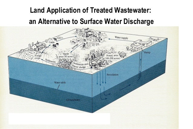 Microbial Removal During Sewage Treatment
