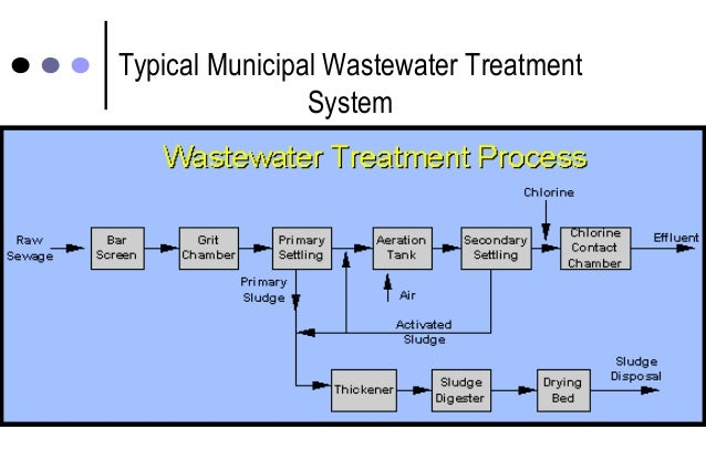 Municipal Water Treatment : Microbial removal during sewage treatment