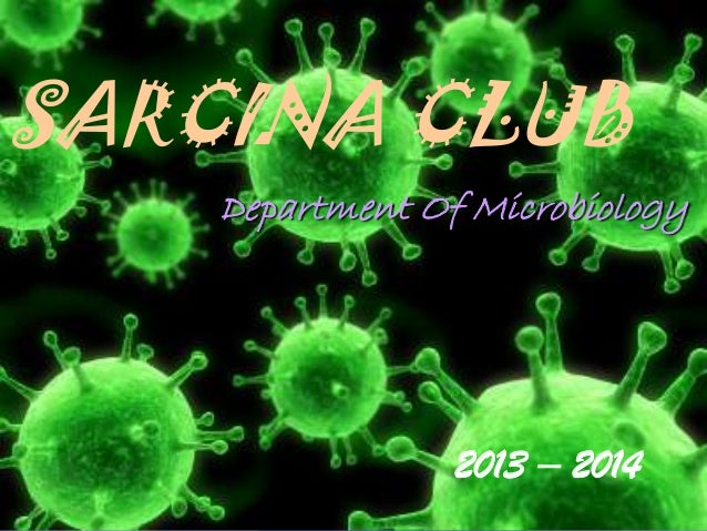 SARCINA CLUB Department Of Microbiology  2013 – 2014