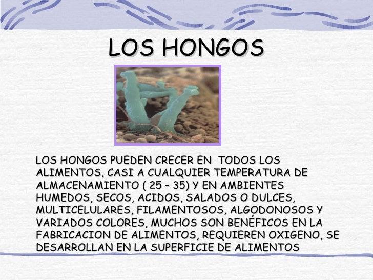 LOS HONGOSLOS HONGOS PUEDEN CRECER EN TODOS LOSALIMENTOS, CASI A CUALQUIER TEMPERATURA DEALMACENAMIENTO ( 25 – 35) Y EN AM...