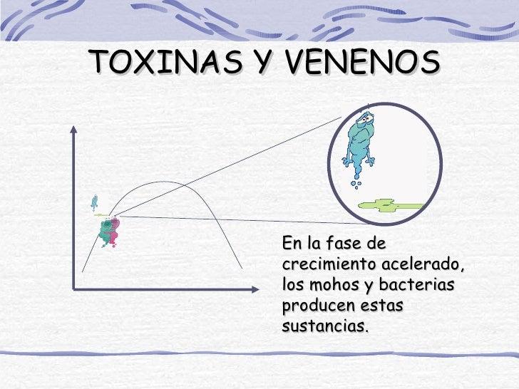 TOXINAS Y VENENOS         En la fase de         crecimiento acelerado,         los mohos y bacterias         producen esta...
