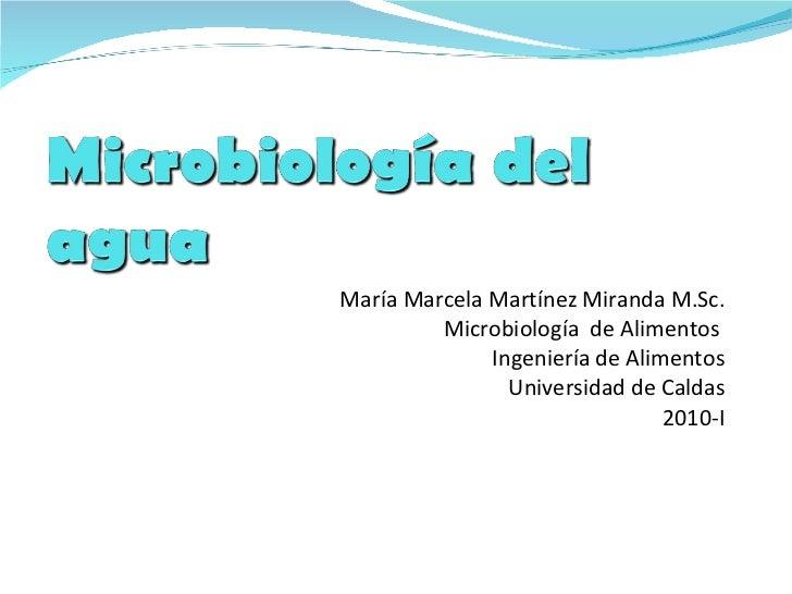 María Marcela Martínez Miranda M.Sc. Microbiología  de Alimentos  Ingeniería de Alimentos Universidad de Caldas 2010-I