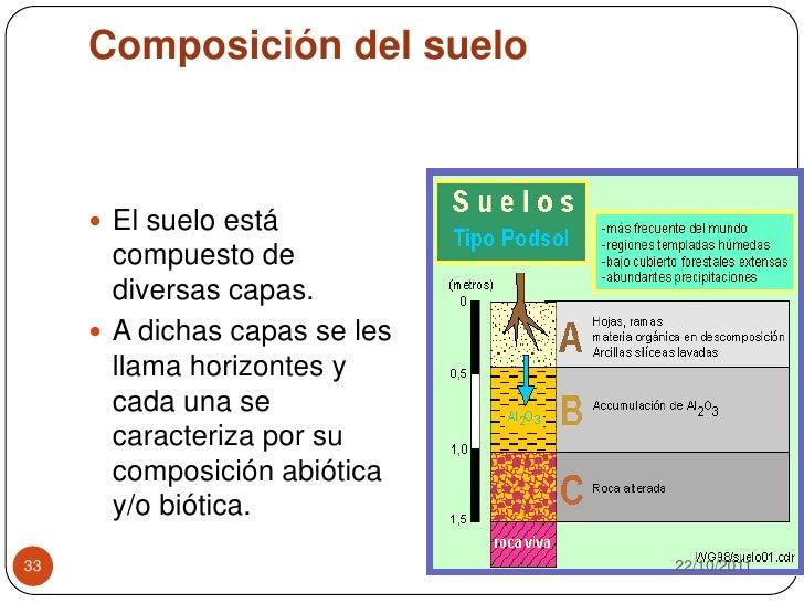 Microbiologia del suelo para estudiantes de microbiologia for Como estan formados los suelos