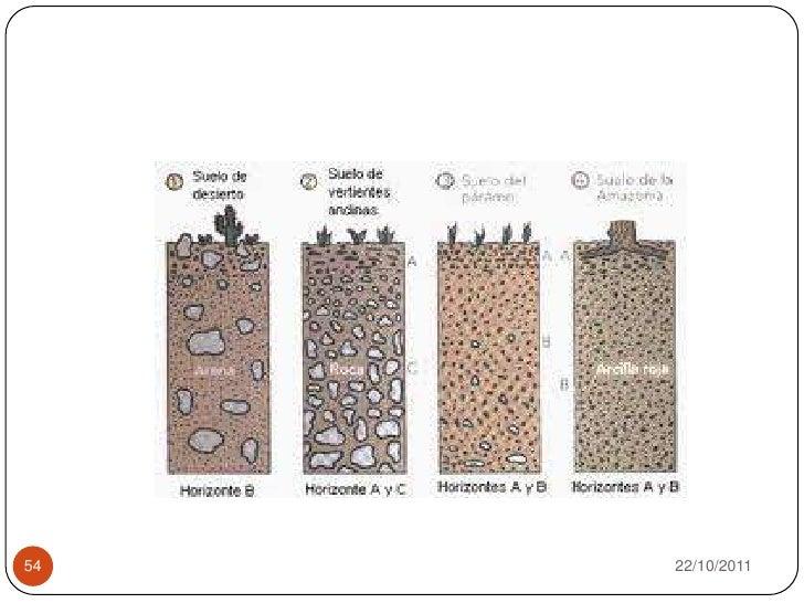 Microbiologia del suelo para estudiantes de microbiologia for Como se creo el suelo