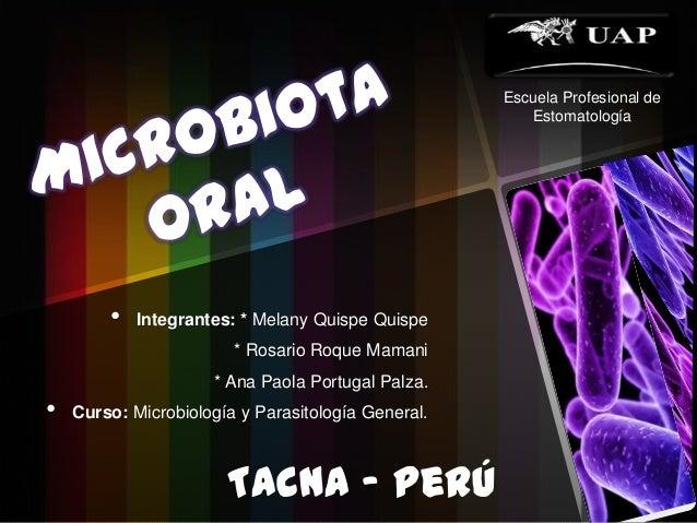 • Integrantes: * Melany Quispe Quispe* Rosario Roque Mamani* Ana Paola Portugal Palza.• Curso: Microbiología y Parasitolog...