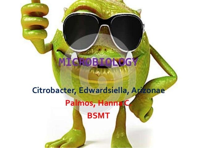 MICROBIOLOGY Citrobacter, Edwardsiella, Arizonae Palmos, Hanna C. BSMT