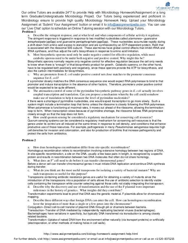 Free business credit report uk