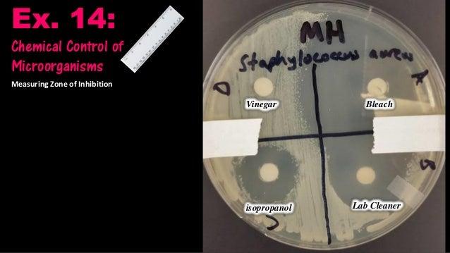 Te30 antibiotic