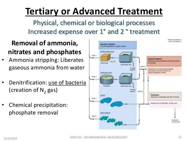 Microbiology Of Sewage And Sewage Treatment