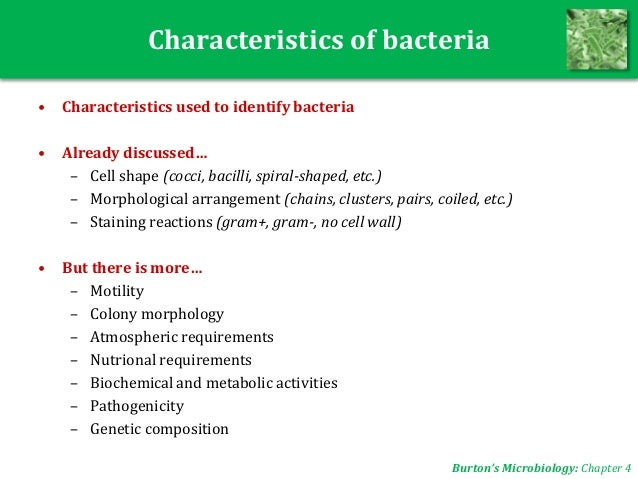 identification of morphological and physiological characteristics of unknown bacteria