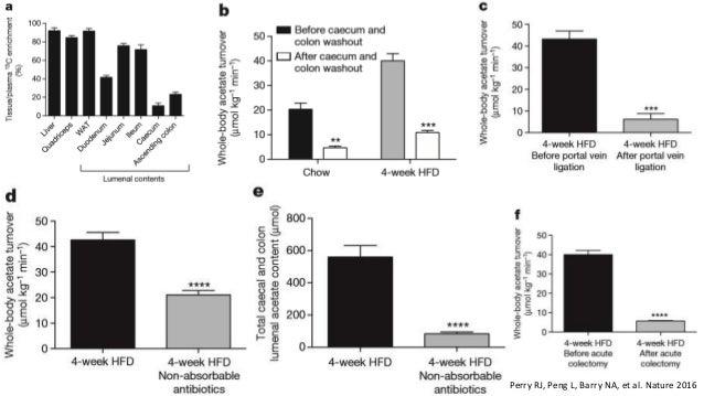 Microbiota intestinal y enfermedades metabólicas
