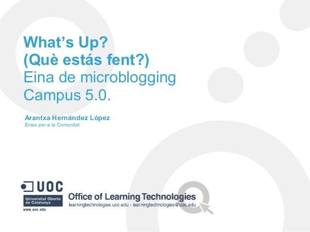 What's Up? (Què estás fent?) Eina de microblogging Campus 5.0. Arantxa Hernández López Eines per a la Comunitat