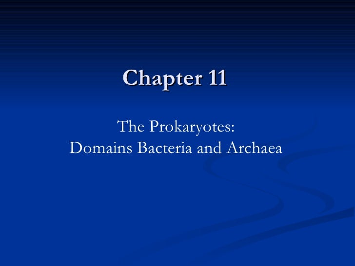 Chapter 11 The Prokaryotes: Domains Bacteria and Archaea