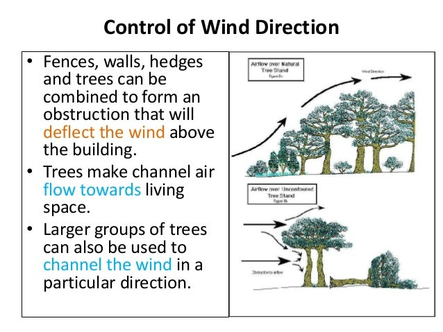 microclimate in architecture What are the different types of microclimates in truth, there is a distinctive microclimate for every type of environment on the earth's surface, and as far as the uk is concerned they include the following.