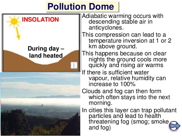 Microclimate: Definition, Factors & Examples - Video ...