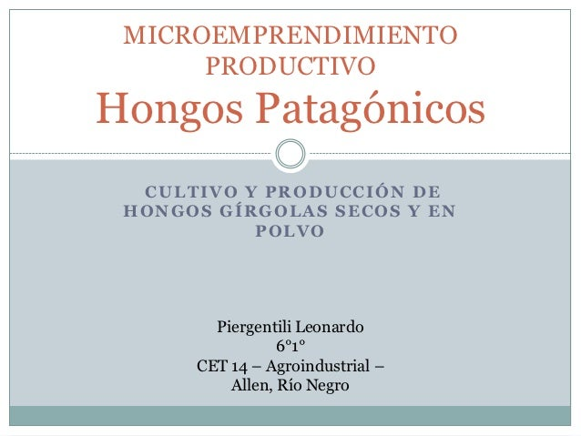 MICROEMPRENDIMIENTO      PRODUCTIVOHongos Patagónicos  CULTIVO Y PRODUCCIÓN DE HONGOS GÍRGOLAS SECOS Y EN           POLVO ...