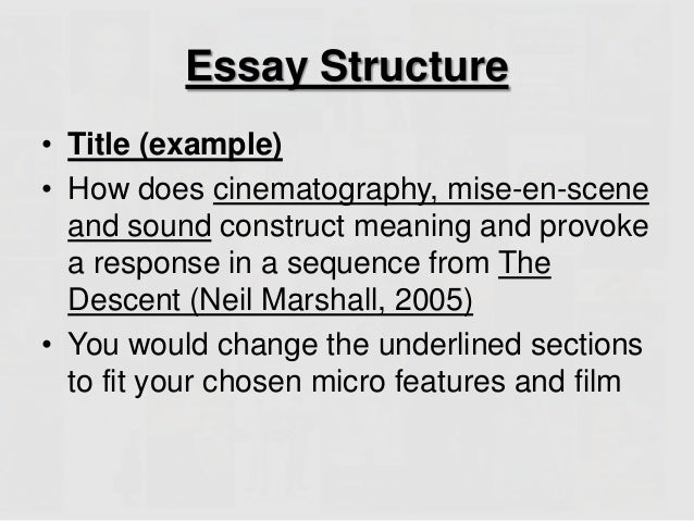 Counselling Theory Essay
