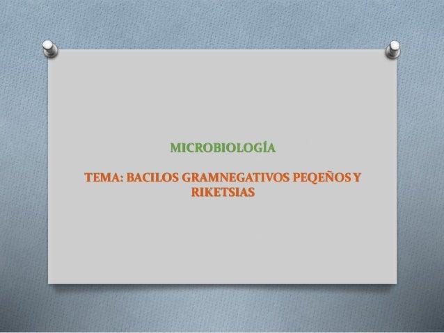 MICROBIOLOGÍA TEMA: BACILOS GRAMNEGATIVOS PEQEÑOS Y RIKETSIAS