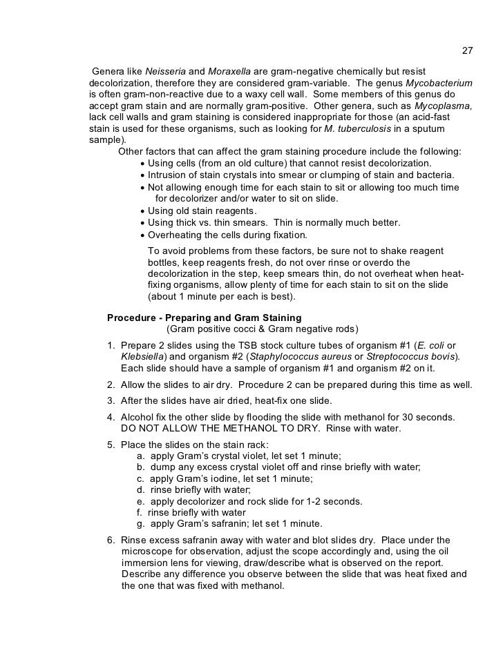 unknown lab report i example Example of unknown lab report for microbiology includes all sections of a scientific paper, introduction, materials, results, discussion, references.
