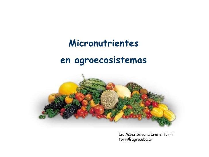Micronutrientes en agroecosistemas                 Lic MSci Silvana Irene Torri             torri@agro.uba.ar
