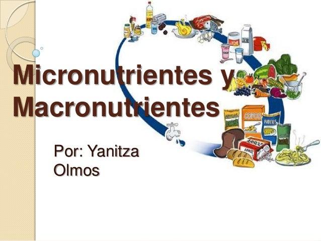 Micronutrientes yMacronutrientes   Por: Yanitza   Olmos