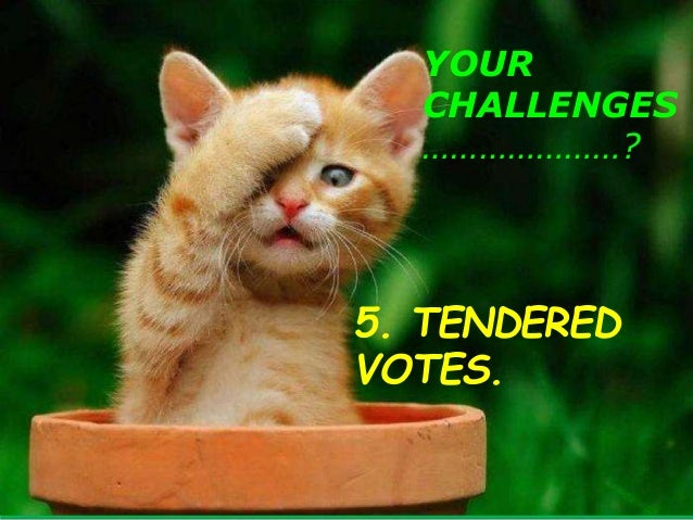YOUR CHALLENGES …………………? 6. CSV-PROXY VOTERS