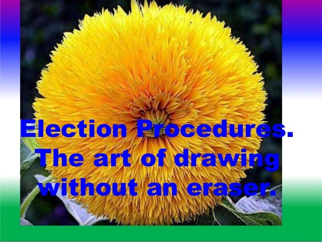Election Procedures. The art of drawing without an eraser.