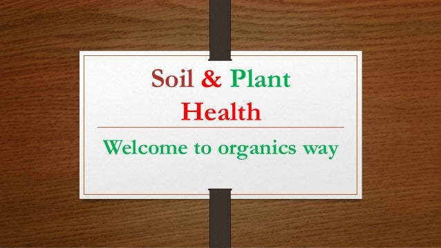 Soil & Plant Health Welcome to organics way