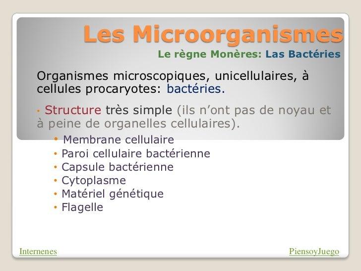Les Microorganismes                               Le règne Monères: Las Bactéries    Organismes microscopiques, unicellula...