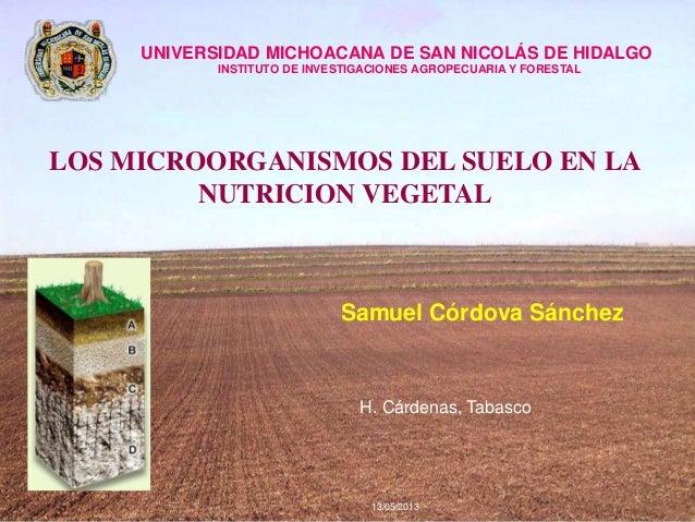 Samuel Córdova Sánchez13/05/2013H. Cárdenas, TabascoUNIVERSIDAD MICHOACANA DE SAN NICOLÁS DE HIDALGOINSTITUTO DE INVESTIGA...