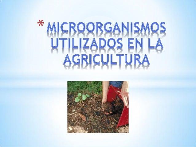 *La fertilidad del suelo es vital para la vida en el planeta a largo plazo. El aumento en las últimas décadas de la produc...