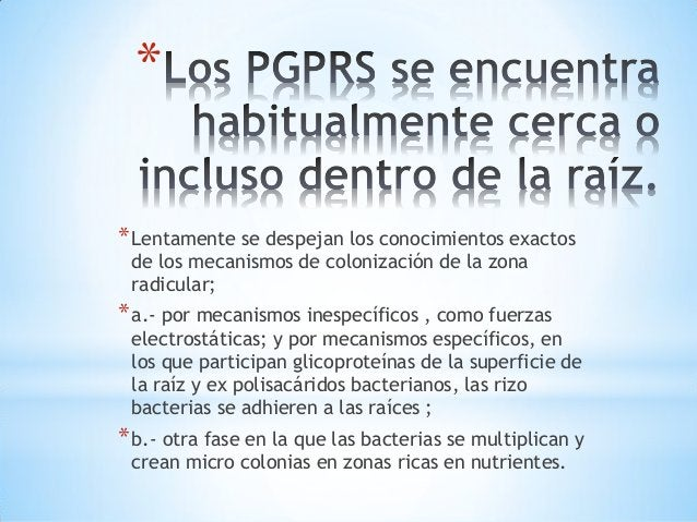 * *1. Bacterias y actinomicetos *2. Hongos *3. Algas *4. Protozoos *5. Virus : Son parásitos intracelulares estrictos.