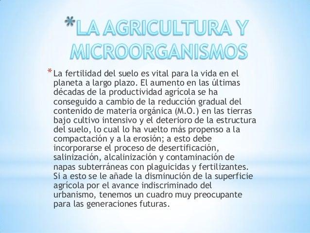 Microorganismos utilizados en la agricultura Slide 2