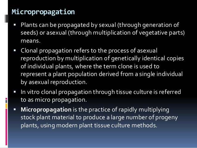 Micropropagation  Plants can be propagated by sexual (through generation of seeds) or asexual (through multiplication of ...