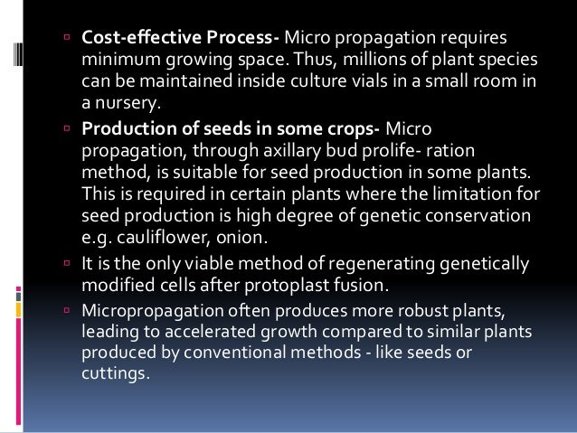 Micropropagation