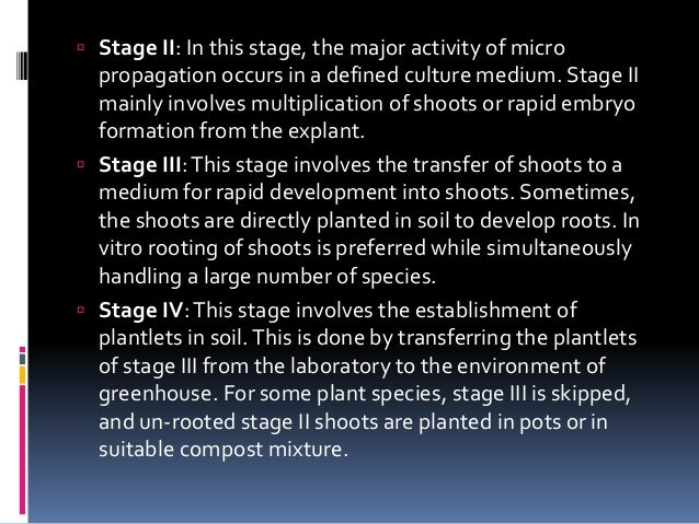  Stage II: In this stage, the major activity of micro propagation occurs in a defined culture medium. Stage II mainly inv...
