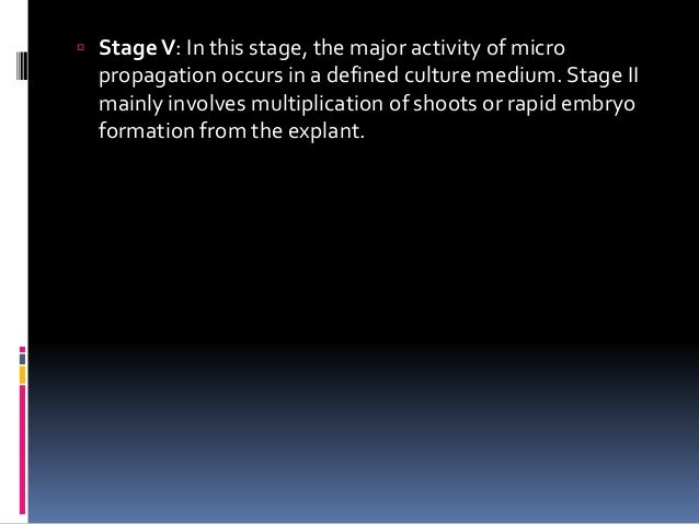  StageV: In this stage, the major activity of micro propagation occurs in a defined culture medium. Stage II mainly invol...