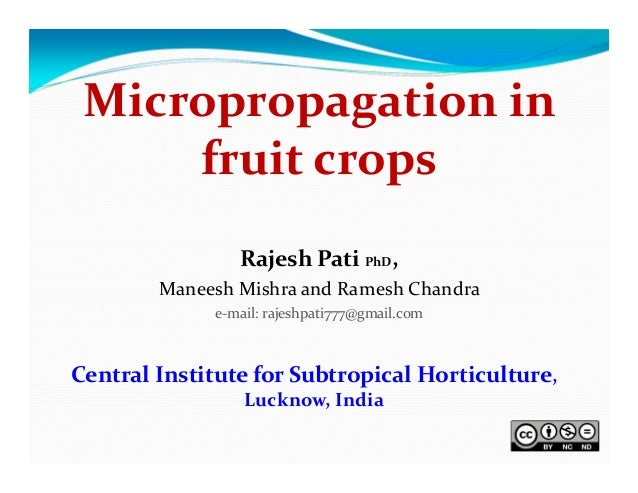 Micropropagation in  fruit crops Rajesh Pati PhD, Maneesh Mishra and Ramesh Chandra e‐mail: rajeshpati777@gmail.com   Cent...