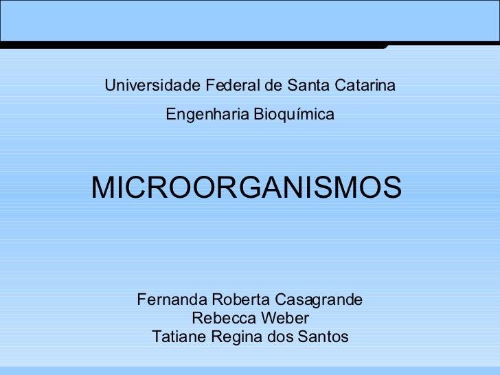 MICROORGANISMOS Fernanda Roberta Casagrande Rebecca Weber Tatiane Regina dos Santos Universidade Federal de Santa Catarina...