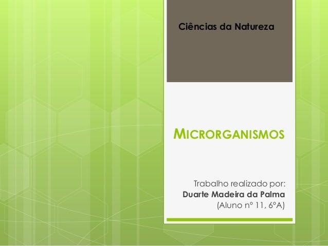 MICRORGANISMOS Trabalho realizado por: Duarte Madeira da Palma (Aluno nº 11, 6ºA) Ciências da Natureza