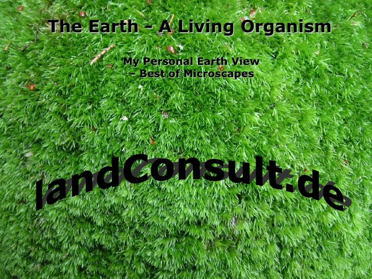 The Earth - A Living Organism My Personal Earth View – Best of Microscapes