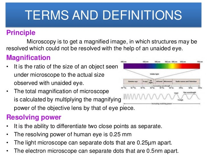 Microscope Slide 2
