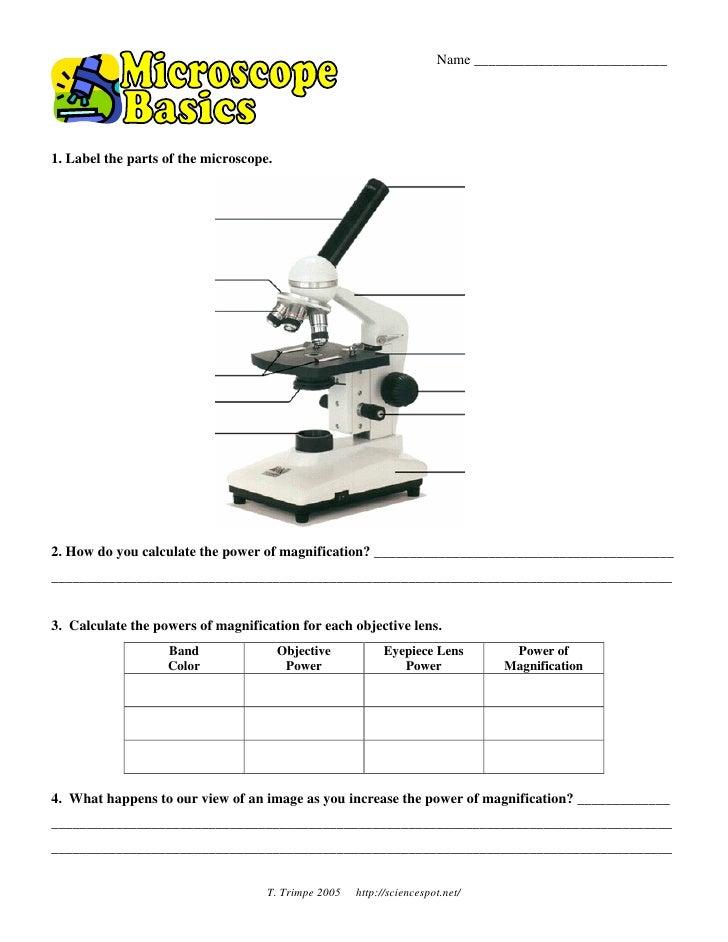 Microscope Basicswkst