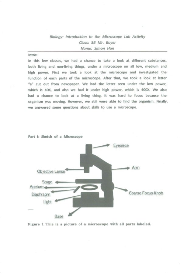 Virtual Lab Report Template Paper