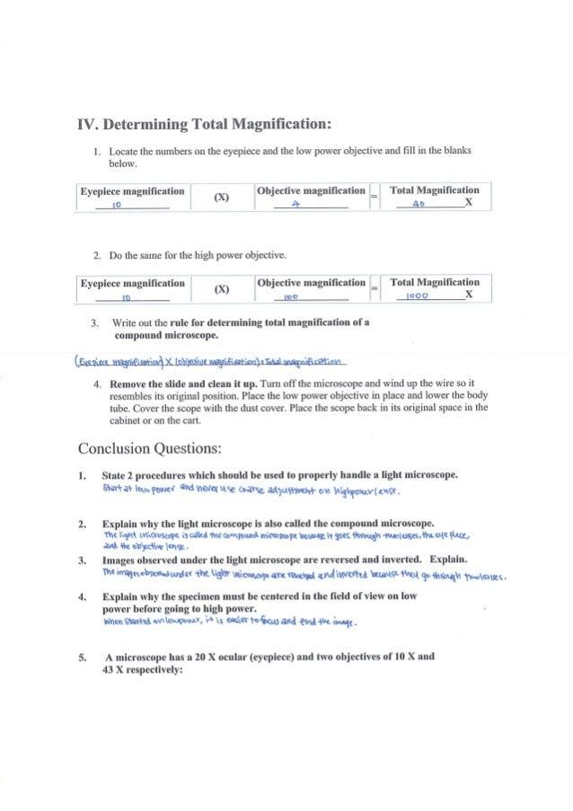 lab 1 report letter e under microscope Created date: 20130903081813z.
