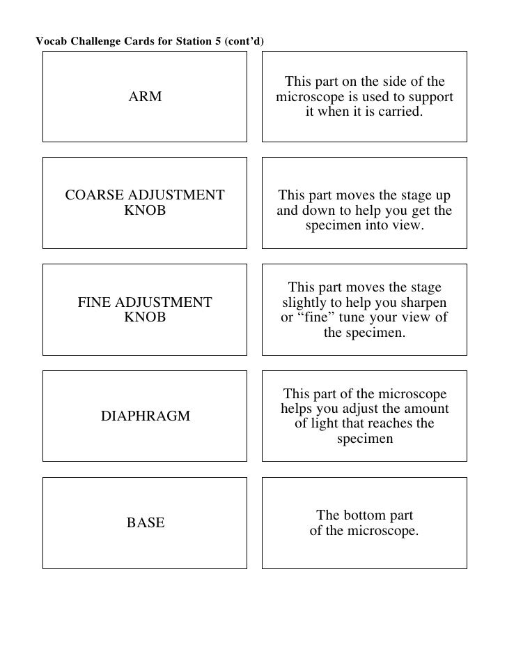 Microscope Mania Micro Review Act – Microscope Mania Worksheet