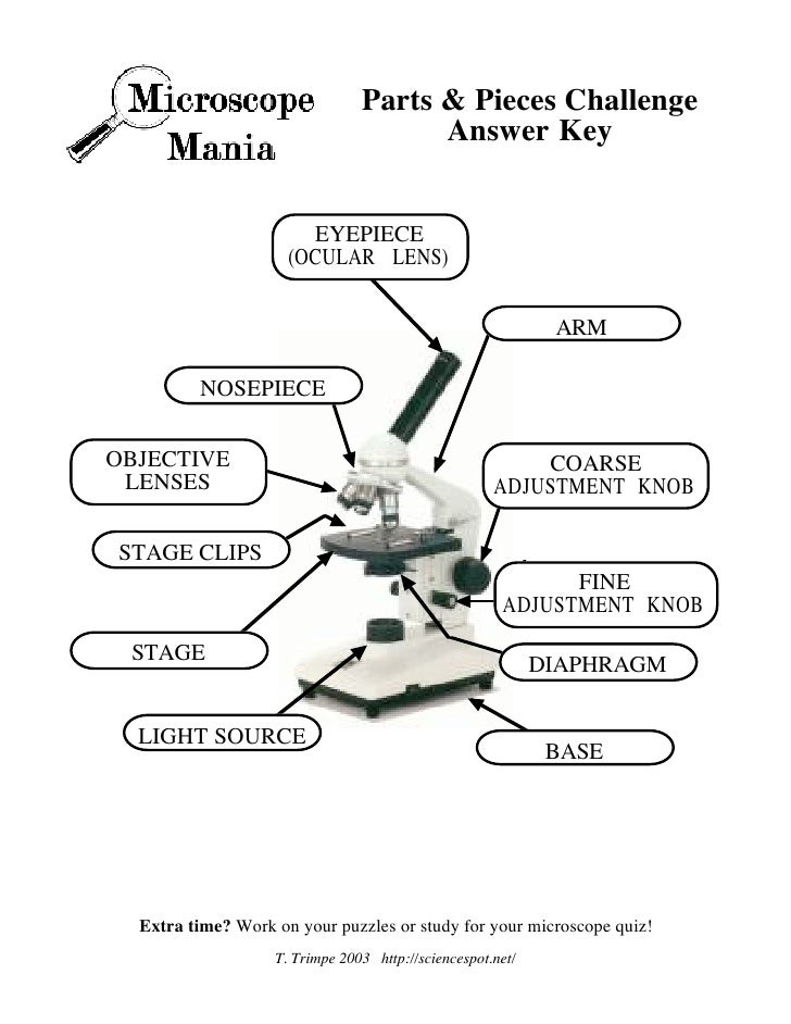 Microscope Mania Micro Review Act – Microscope Quiz Worksheet