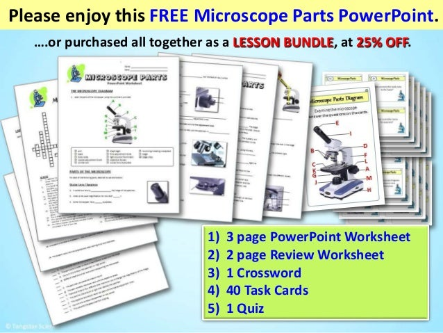 Microscope parts power point – Parts of a Microscope Worksheet